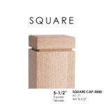 square-cap-5000.jpg